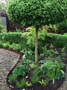 Trädgårdsinspiration och trädgårdsdesign